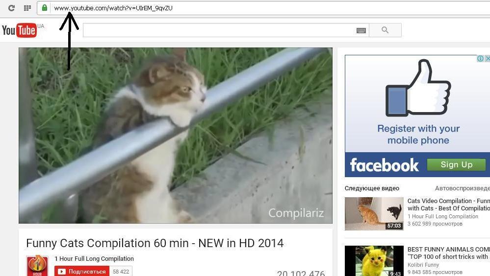 Сохраняем видео с youtube при помощи ss